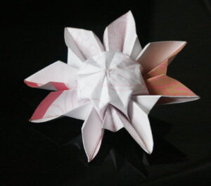 Origami Daisy, Paper Flower
